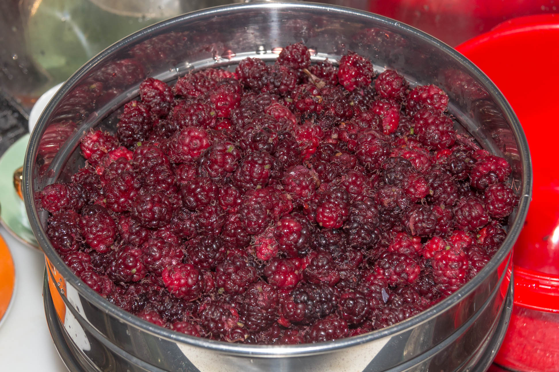 a bowl of red and purple  ripened mulberries