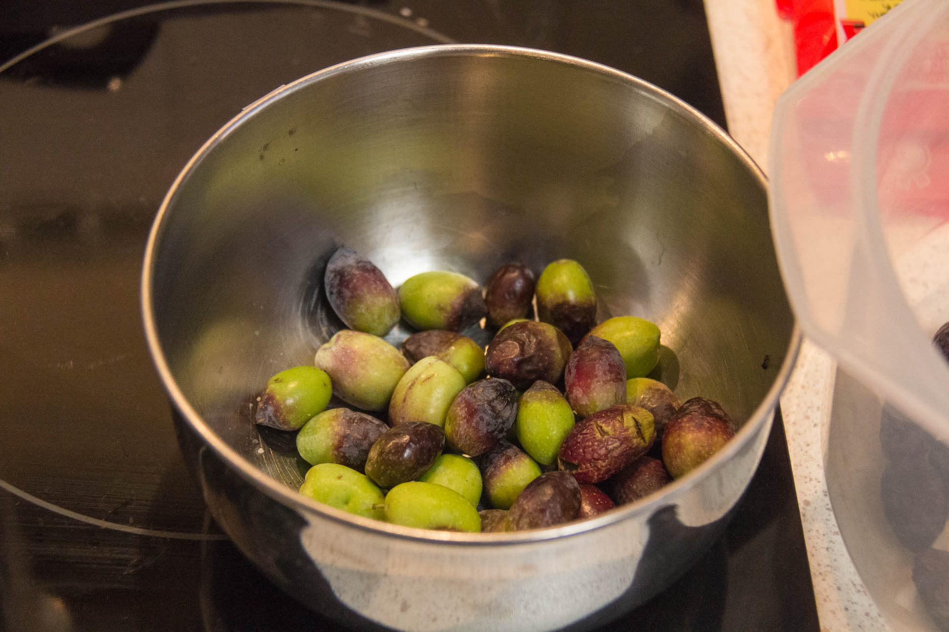 12/04/15 Day 1: Picking olives and separating them into different categories such as whole, green, shriveled and half eaten