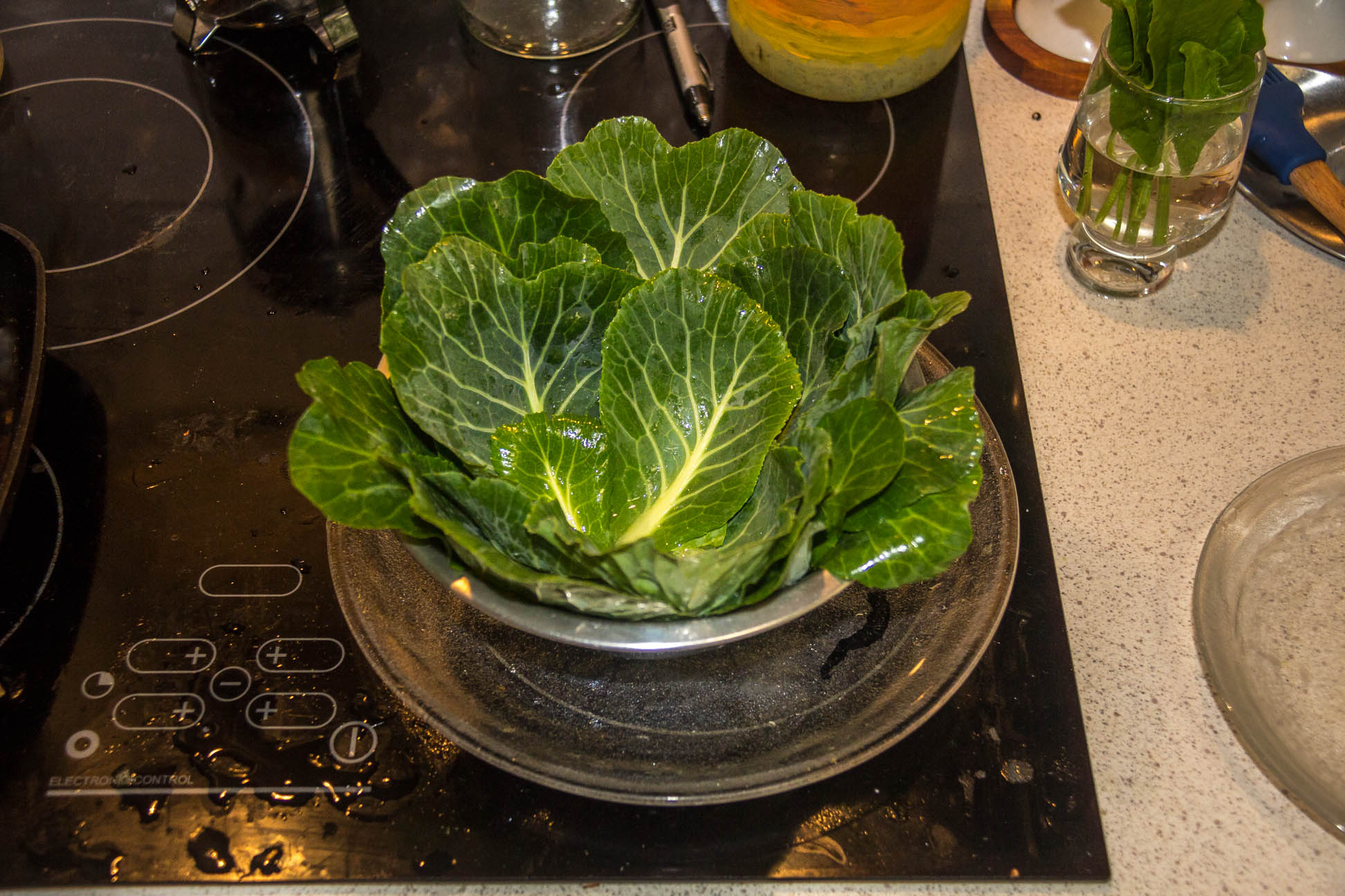 03/07/15 Day 80: Hmm.. i would have to say it's a successful experiment. I managed to harvest about 100g and it looks like a small cabbage when put in a bowl =p