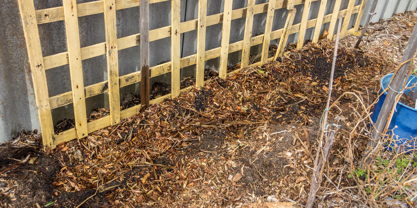 28/04/15 Day 1: Covered up and mulched and watered in the seeds