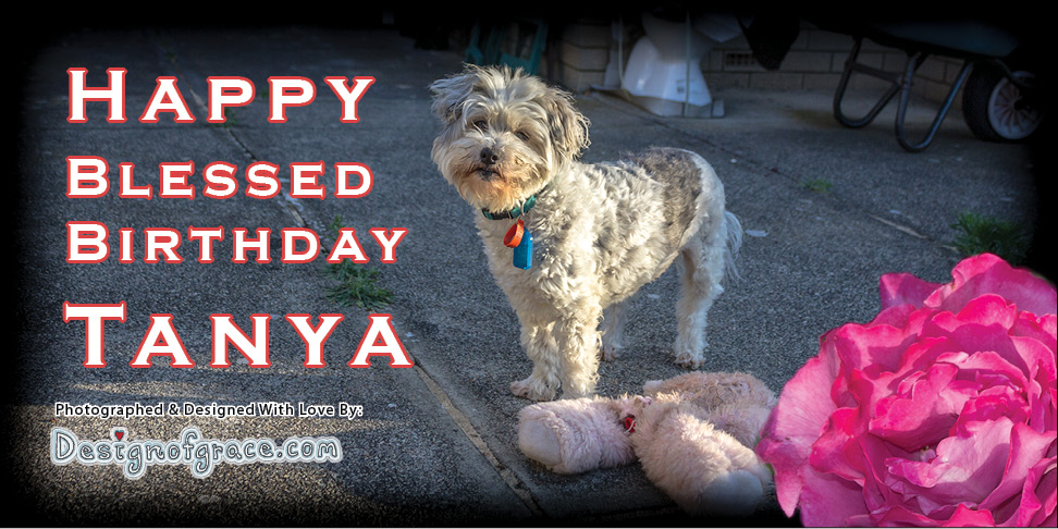 Penny Wishing Tanya A Very Blessed Birthday!