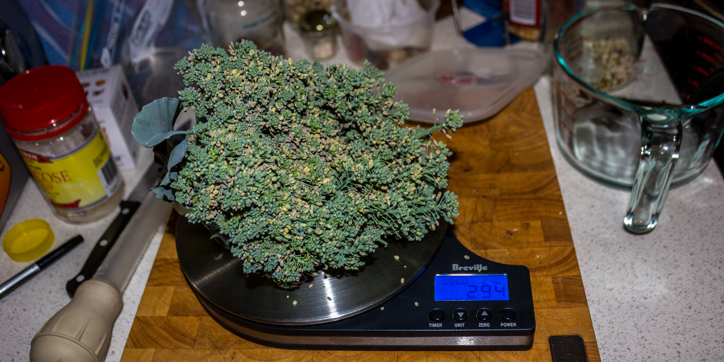 1102/01/16 1st broccoli harvested was 294g Waited a little too long before harvesting so it did went to seed a little and the exterior was tough but interior was sweet and delicious