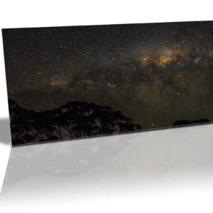 black sky filled with stars and the milky way with silhouette of trees in the foreground