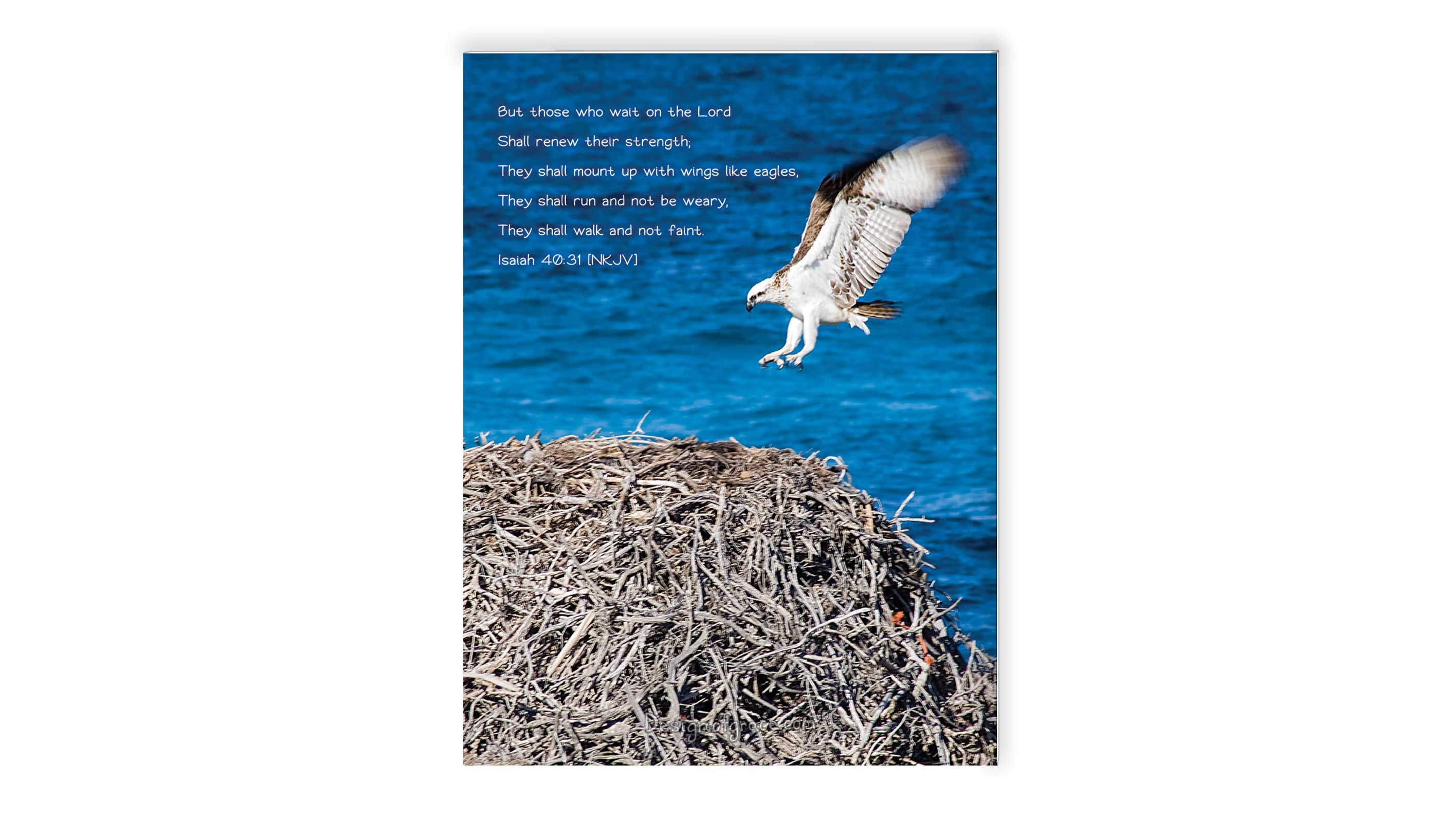8 x 6 feeling tired inspirational mounts with an osprey flying in mid air towards it's nest and a blue water backdrop