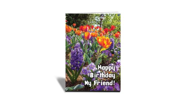 """a vertical greeting card with different flowers of different colours of blue, orange and red. With text in front saying """"Happy Birthday My Friend"""""""