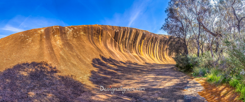 Wave Rock with the silhouette of the trees with beautiful blue skies, Hyden, Western Australia