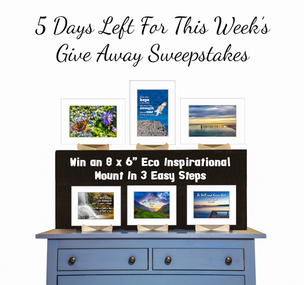 5 Days left for this week's giveaway sweepstakes with the Eco mounts on a blue dresser on black risers