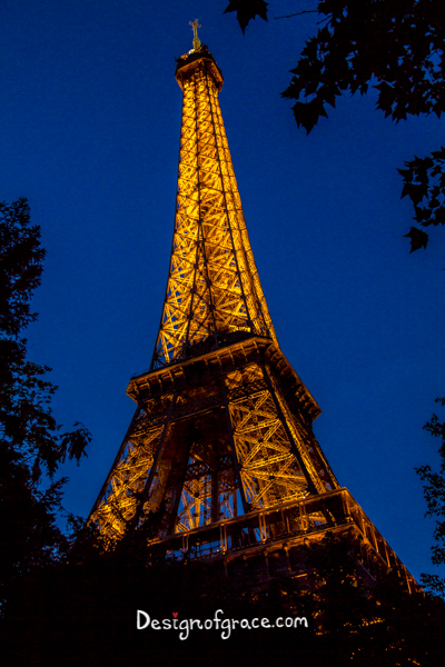 Eiffel Tower lit up at night, Paris, France in the middle of the frame with silhouette of a tree with leaves on a dark blue sky