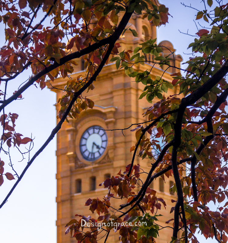 A clock tower near Franklin Square framed by a tree's red and green autumn foliage and contrasting black trunks