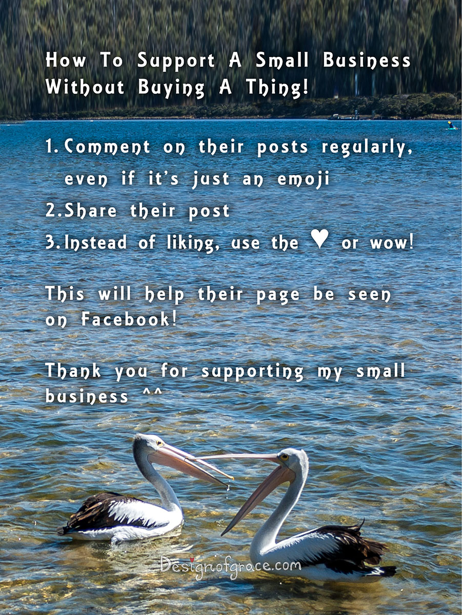 Photos of pelican talking about how to support a small busienss without buying a thing!